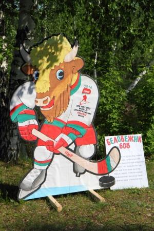 Хоккей Зубр